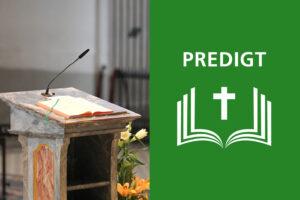Predigt von P. Philipp Steiner zum 17. Sonntag im Jahreskreis