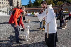 Segensfeier für Mensch und Tier am 2. Oktober
